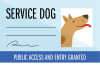 Service dog card icon